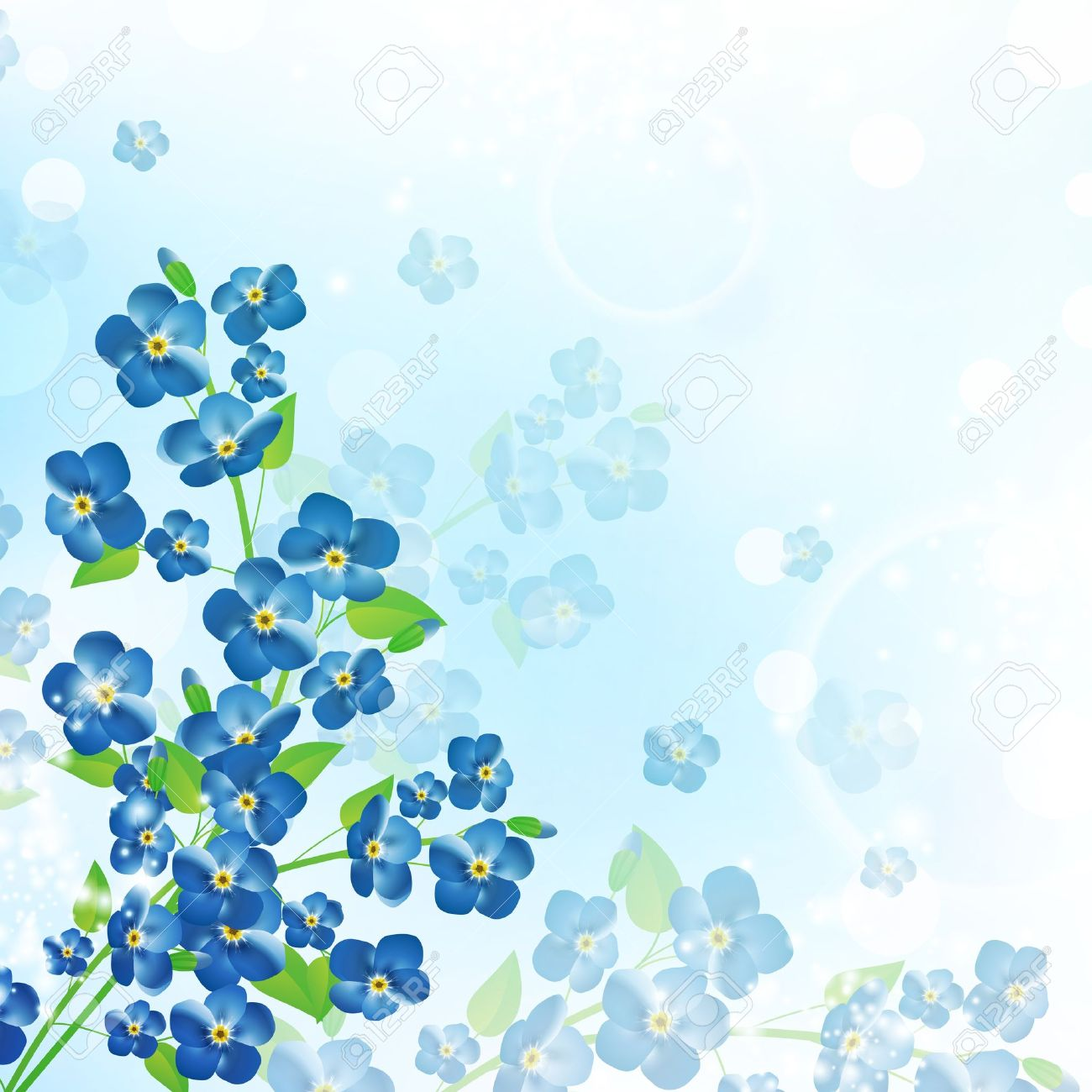 Forget-Me-Not clipart #8, Download drawings