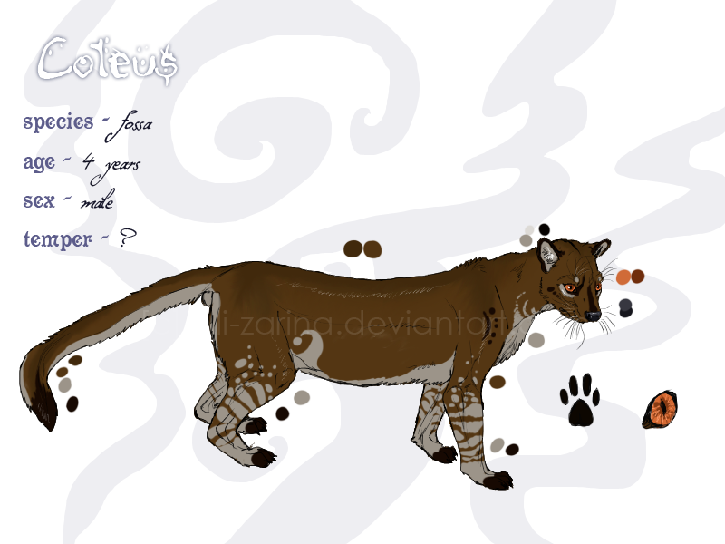 Fossa clipart #18, Download drawings