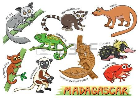 Fossa clipart #6, Download drawings
