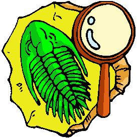Fossil clipart #19, Download drawings
