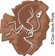 Fossil clipart #15, Download drawings