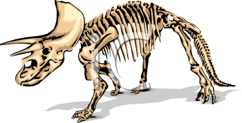 Fossil clipart #13, Download drawings