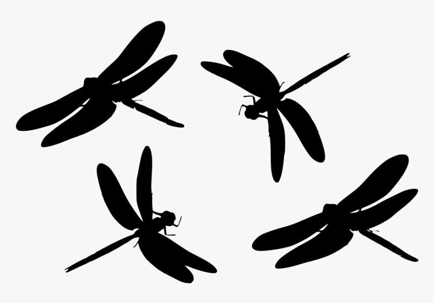 free dragonfly svg #260, Download drawings