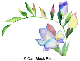 Freesia clipart #16, Download drawings