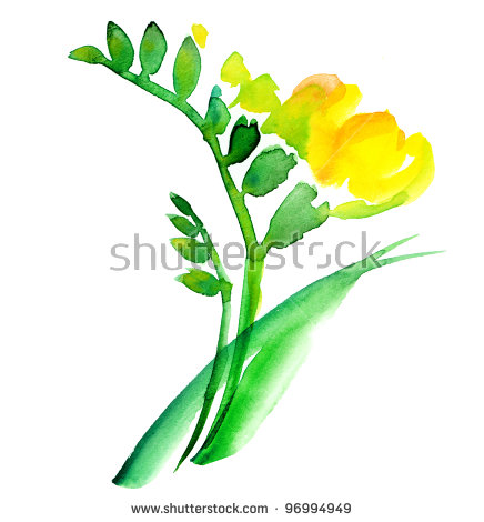 Freesia clipart #2, Download drawings