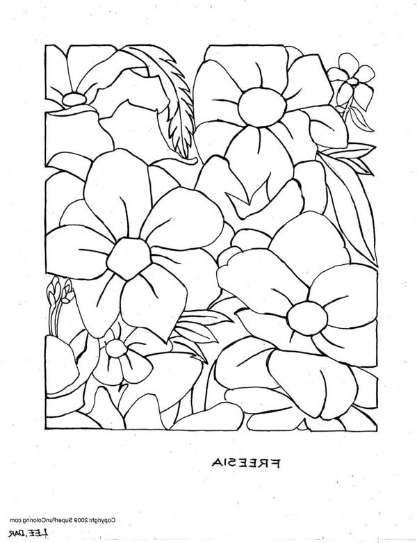 impatients coloring pages - photo#7