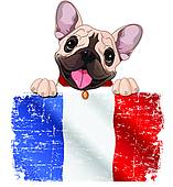French Bulldog clipart #5, Download drawings