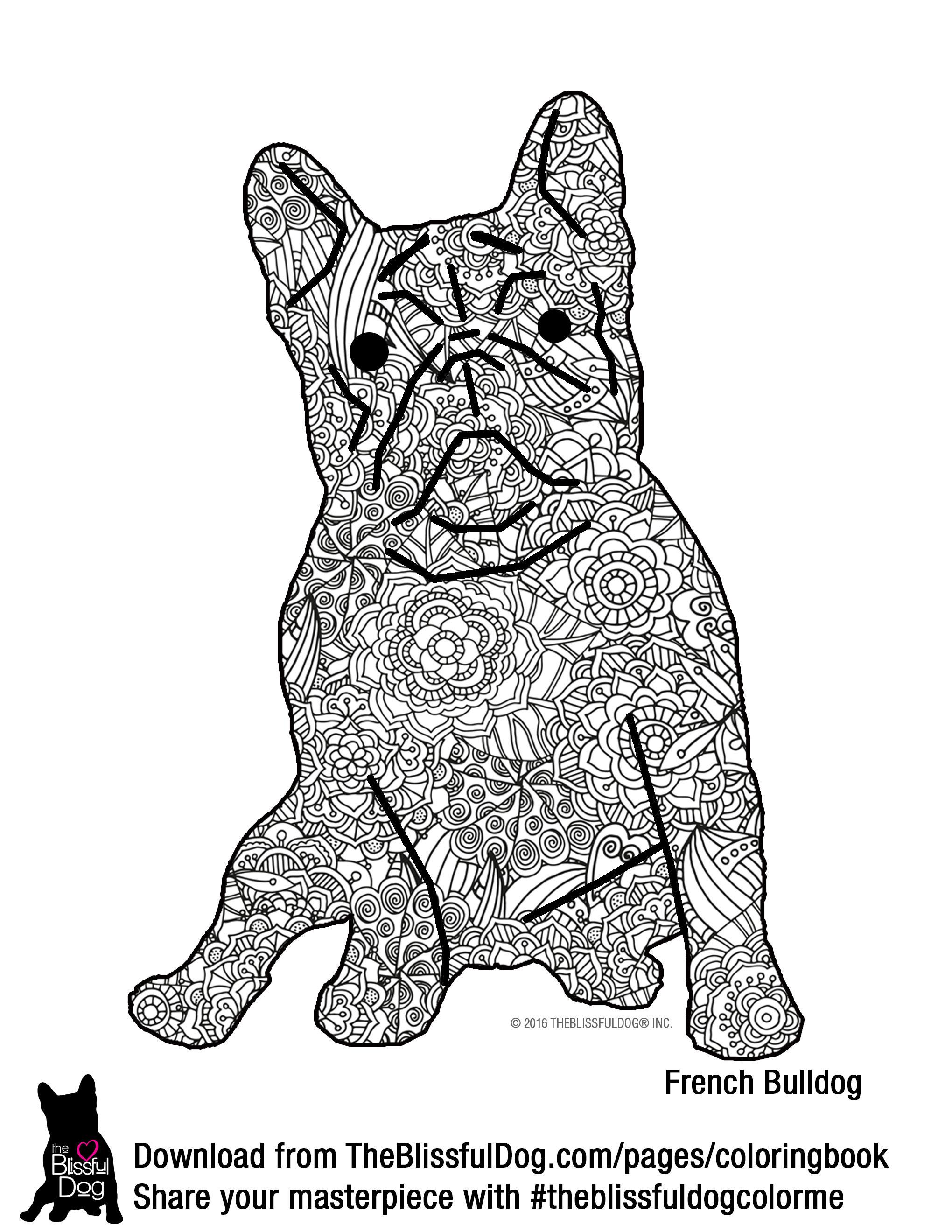 French Bulldog Coloring Download French Bulldog Coloring