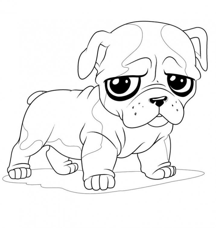 French Bulldog coloring #16, Download drawings