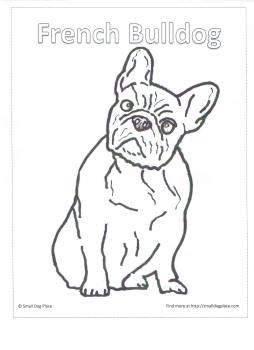 French Bulldog coloring #2, Download drawings