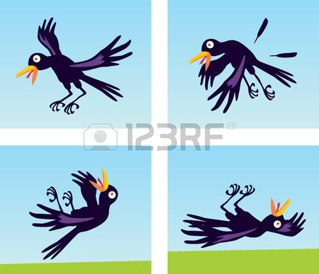 Freshwater Bird clipart #16, Download drawings