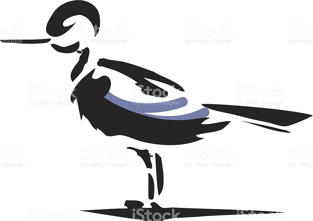 Freshwater Bird clipart #3, Download drawings