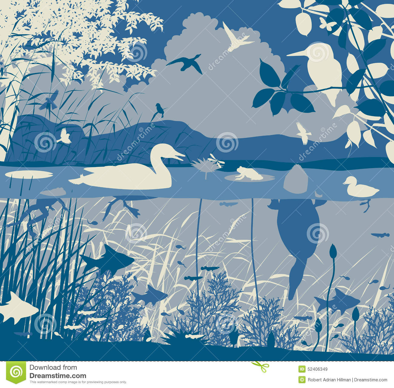 Freshwater Birds clipart #13, Download drawings