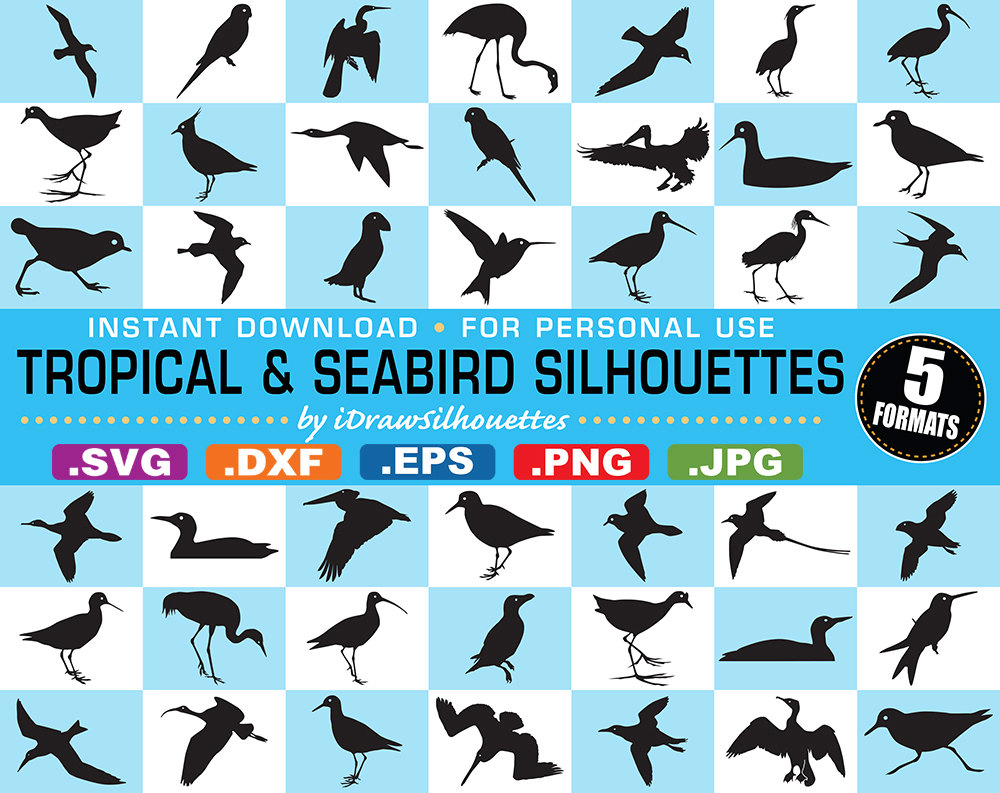 Freshwater Birds svg #4, Download drawings