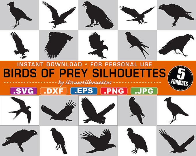 Freshwater Birds svg #2, Download drawings