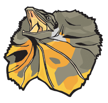 Frilled-neck Lizard clipart #2, Download drawings