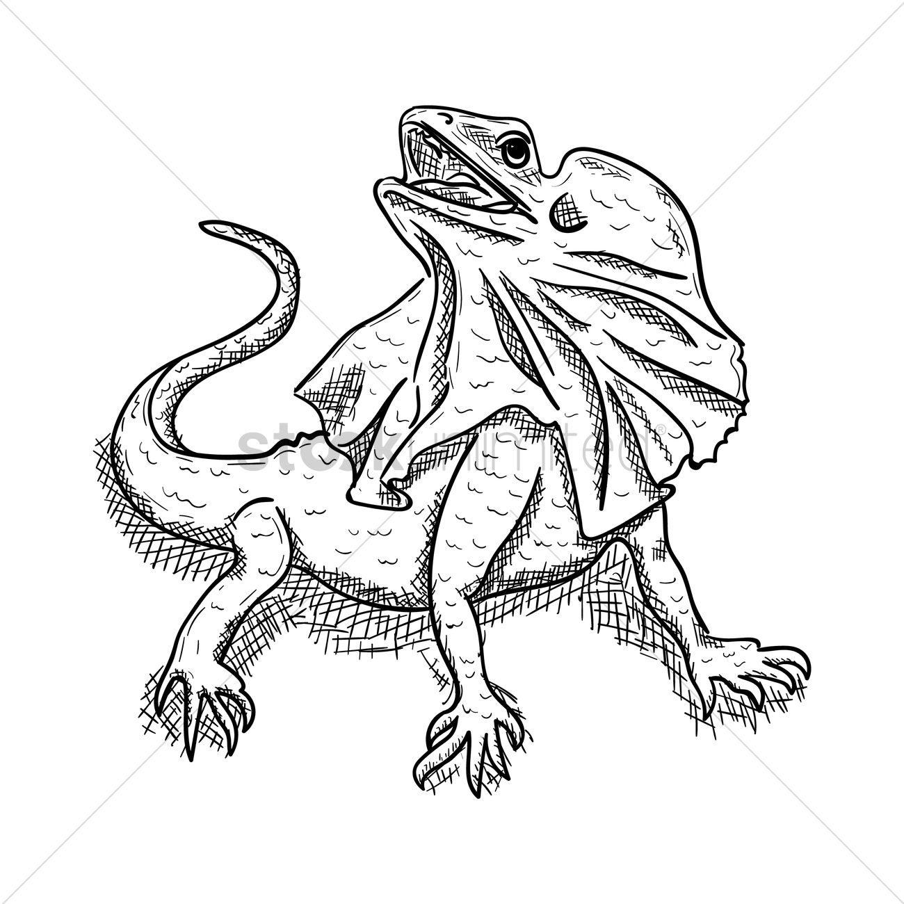 Frilled-neck Lizard svg #6, Download drawings