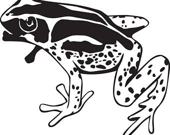 Frog svg #1, Download drawings