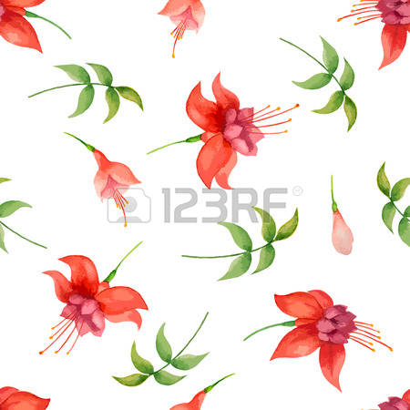 Fuchsia clipart #1, Download drawings