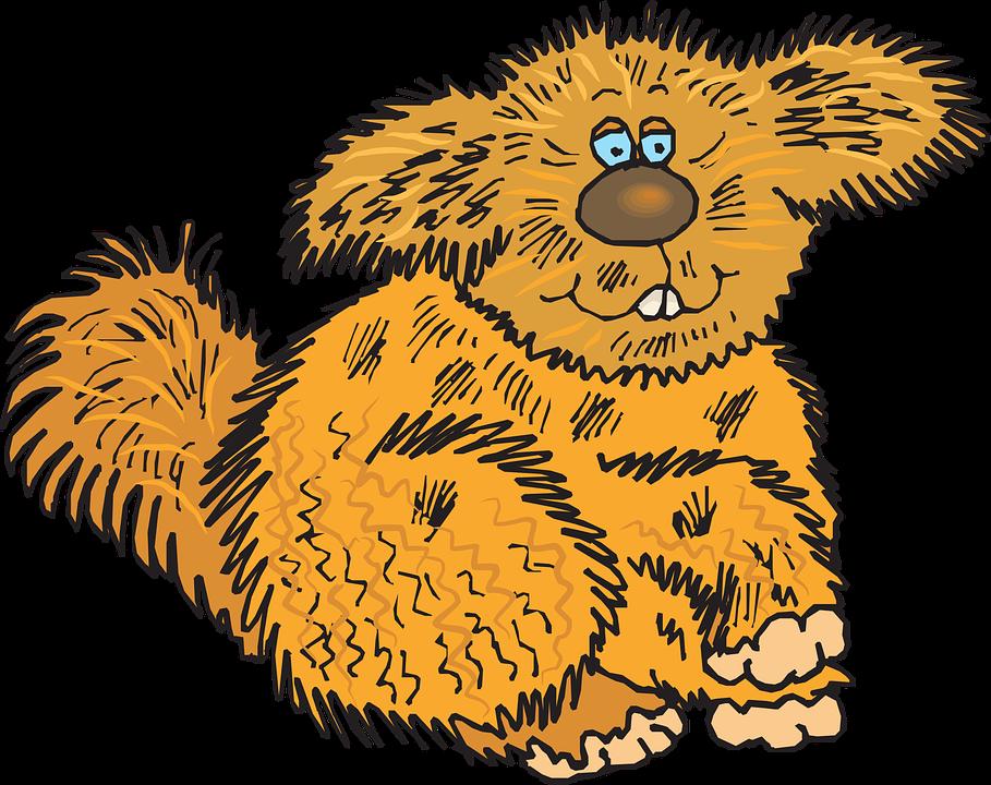 Fur clipart #2, Download drawings