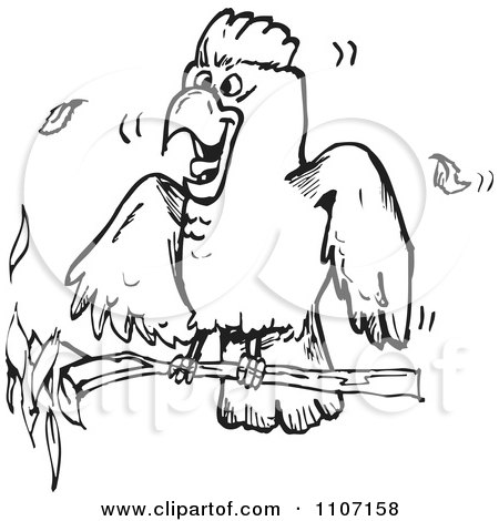 Galah clipart #7, Download drawings