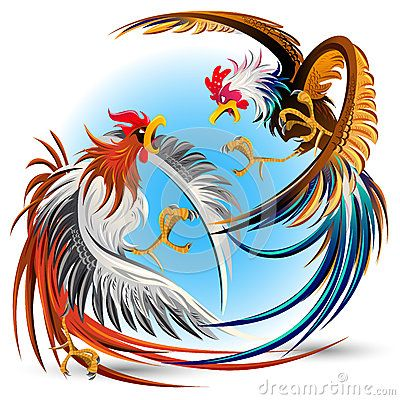 Gallos Finos clipart #19, Download drawings