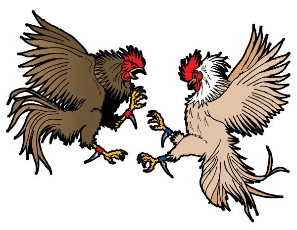 Gallos Finos clipart #11, Download drawings