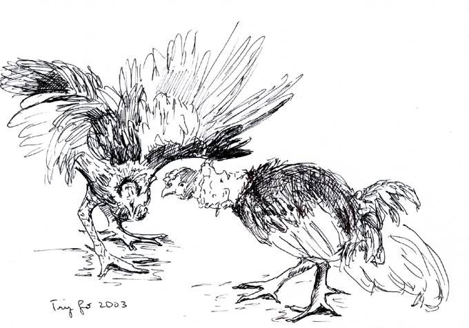 Gallos Finos coloring #20, Download drawings