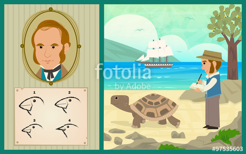 Gal#U00e1pagos Tortoise clipart #4, Download drawings