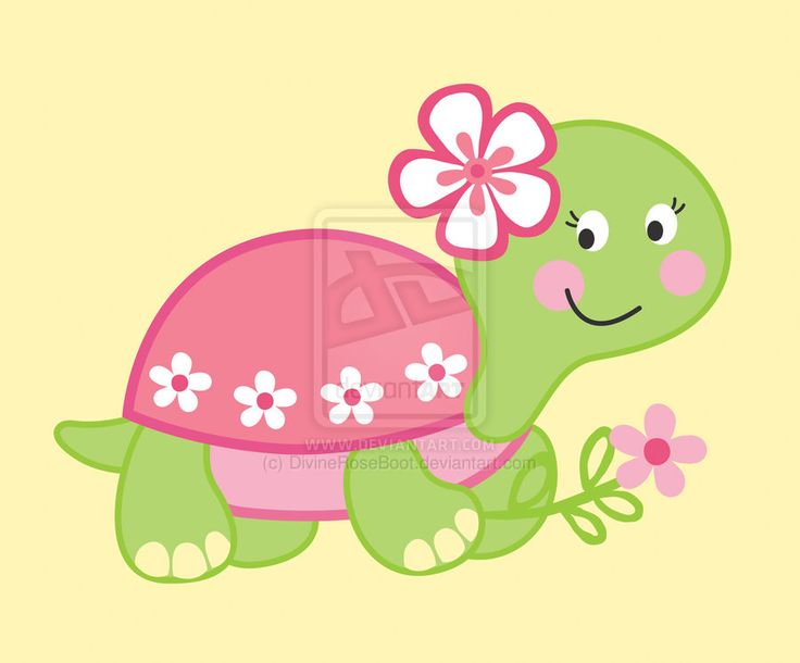 Gal#U00e1pagos Tortoise clipart #7, Download drawings