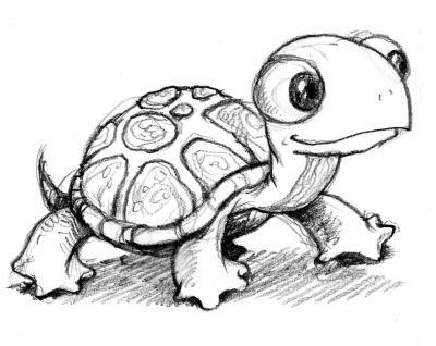 Gal#U00e1pagos Tortoise coloring #8, Download drawings