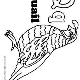 Gambel's Quail coloring #10, Download drawings
