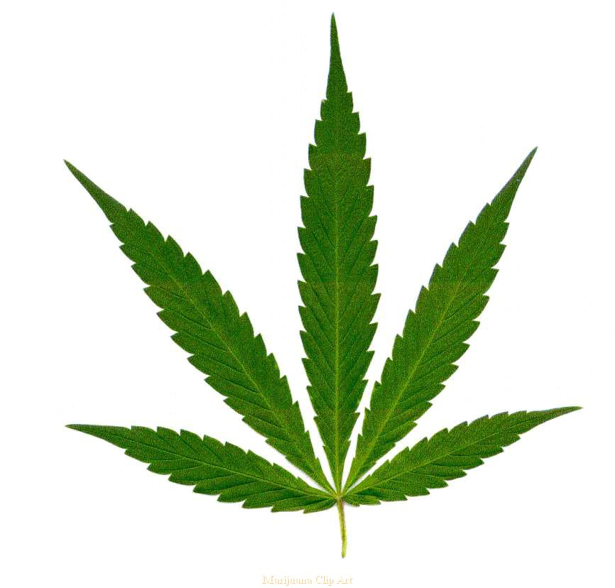 Weed clipart #20, Download drawings