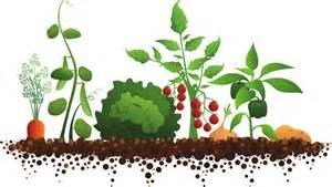 Garden clipart #18, Download drawings