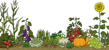 Garden clipart #8, Download drawings