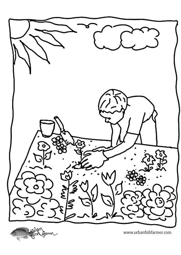 Garden coloring #7, Download drawings