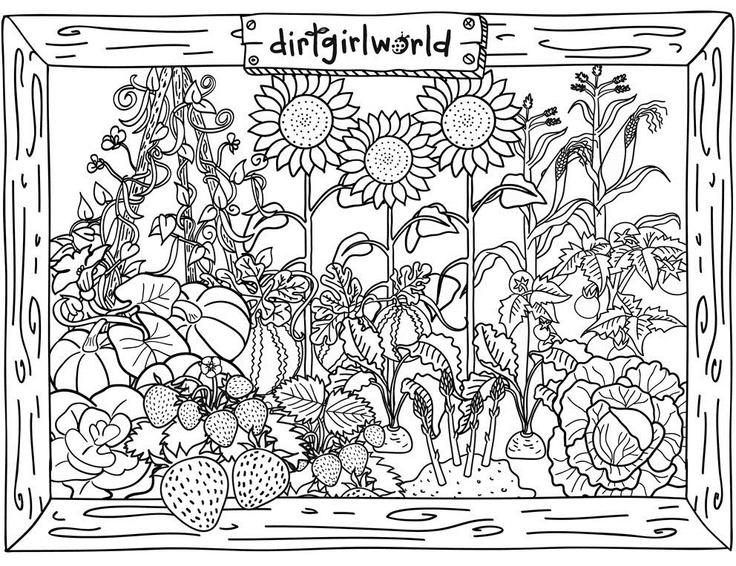 Garden coloring #5, Download drawings