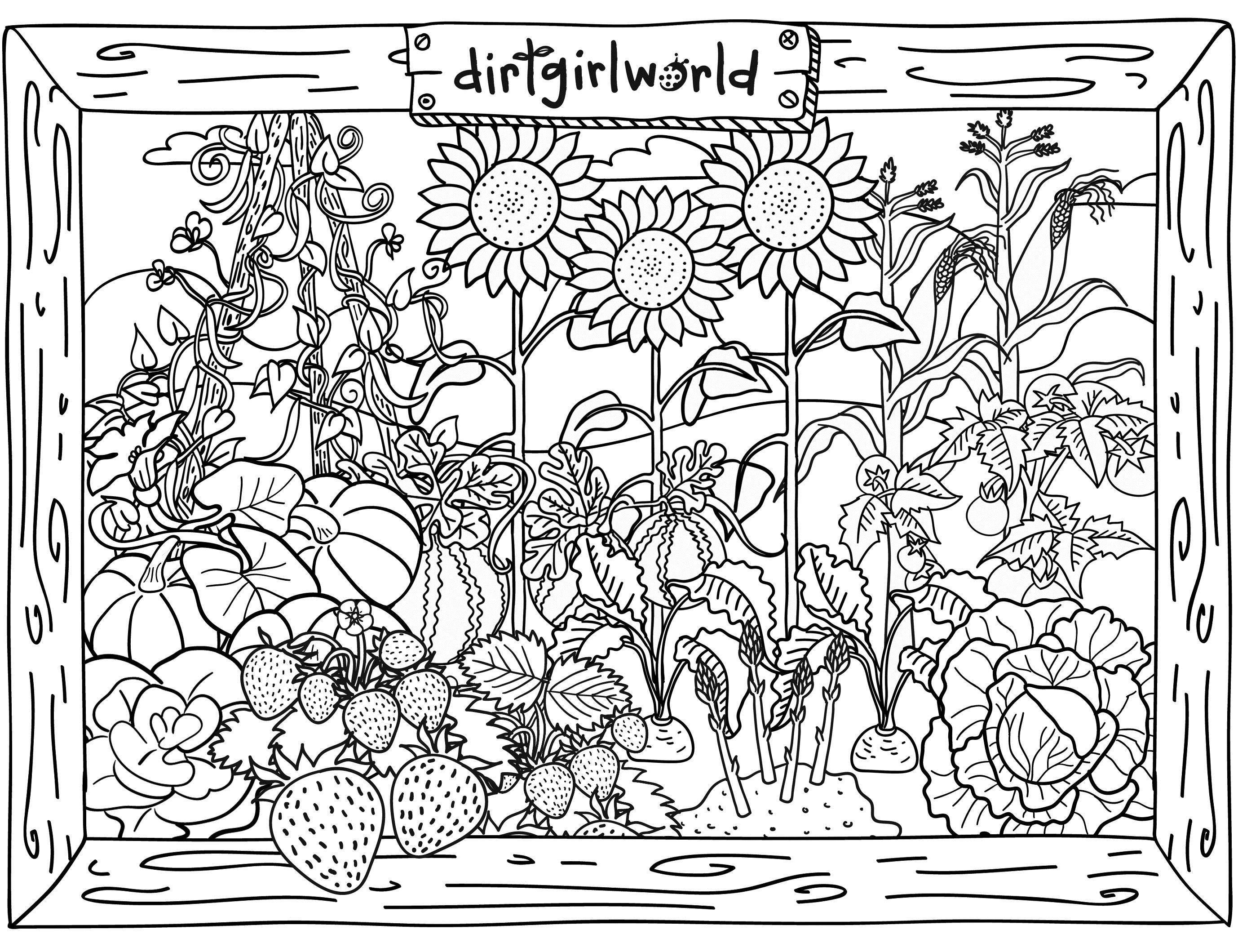 Garden coloring #3, Download drawings