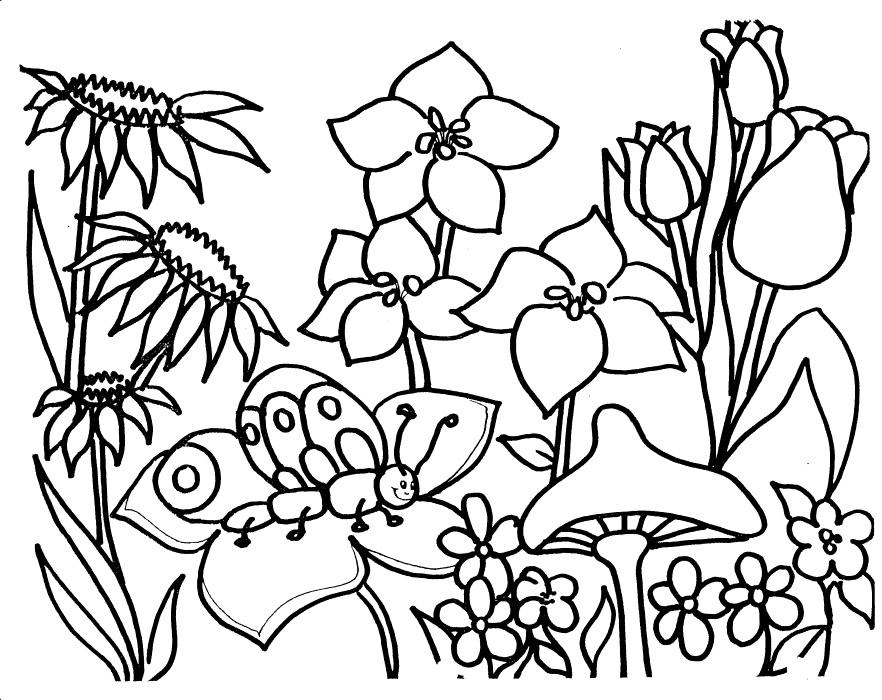 Garden coloring #11, Download drawings