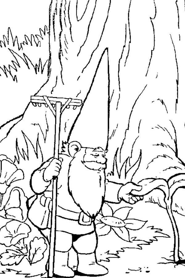 Garden Gnome coloring #4, Download drawings