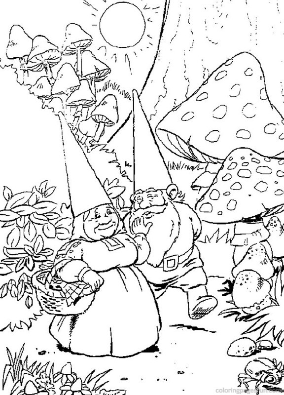 Garden Gnome coloring #11, Download drawings
