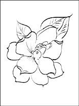Gardenia coloring #10, Download drawings