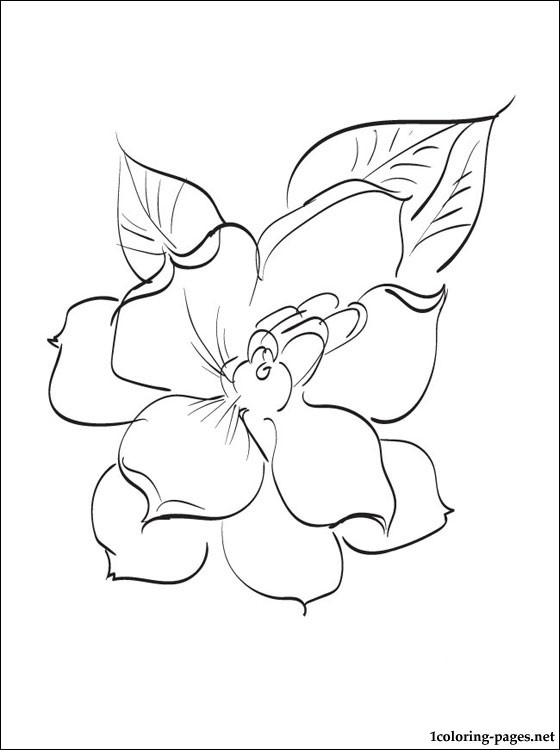 Gardenia coloring #3, Download drawings