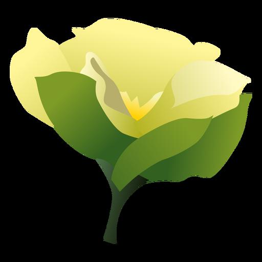 Gardenia svg #12, Download drawings