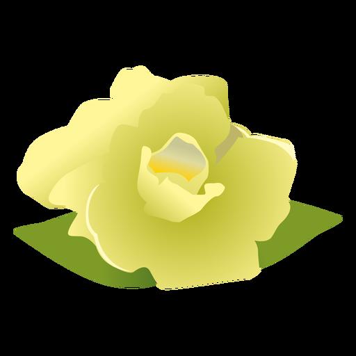 Gardenia svg #11, Download drawings