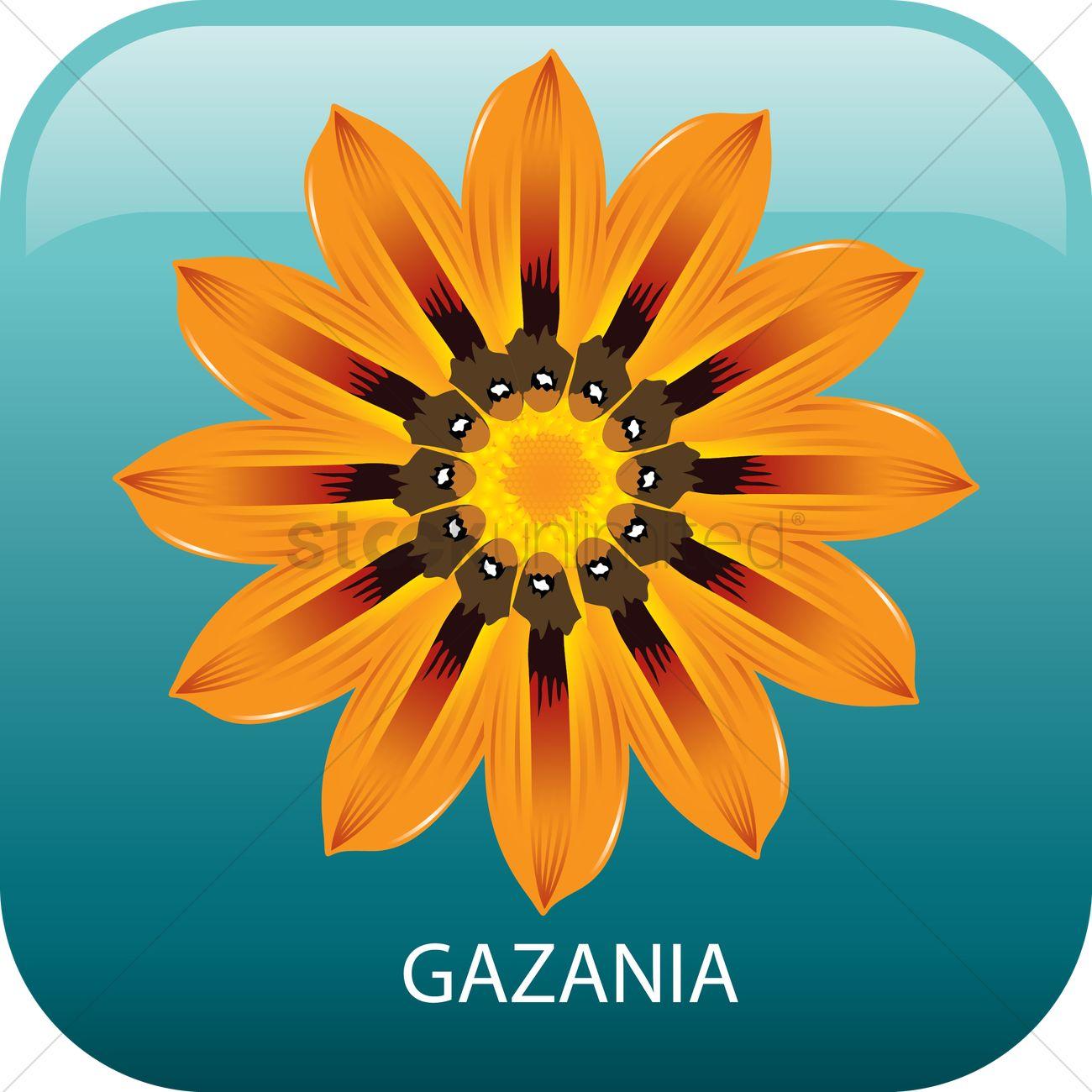 Gazania clipart #17, Download drawings