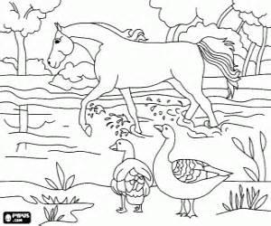 Gaze coloring #2, Download drawings