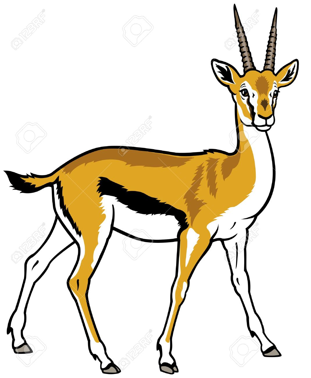 Gazelle clipart #7, Download drawings
