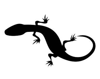Gecko svg #10, Download drawings