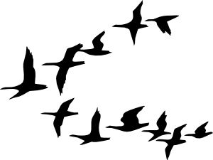 Geese Migration clipart #8, Download drawings